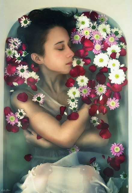 Art, Flower, Bath, Beauty, Rose, Viktor Hajer, Photography