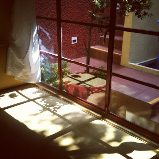 The Red Tree House B in Mexico city. The best home away from home. ;) friendly warm staff and hosts. ;)