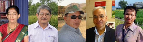 Innovators in rice science