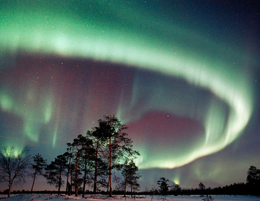 The northern lights or Aurora Borealis. October, February and March are the best months to head to Scandinavia to see this natural spectacle. Gape in awe as greenish-yellow, red or violet lights curl and stretch across the midnight skies. The lights are never the same and can best be seen between 6 p.m. and 1 a.m., often reaching their peak around 11:30 p.m.