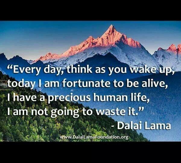 everyday think as you wake up today i am fortunate to be alive i have a precious human life i am not Mỗi ngày, khi thức dậy, bạn hãy nghĩ rằng hôm nay tôi may mắn còn sống, tôi có cuộc sống con người quý giá, tôi sẽ không phí phạm cuộc sống này ( everyday, think as you wake up, today i am.