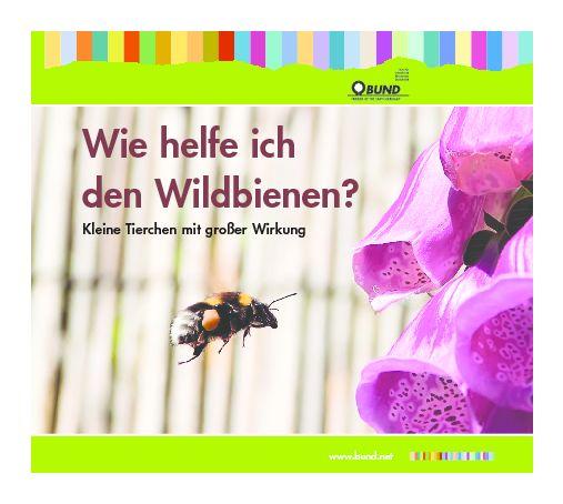 Wie helfe ich den Wildbienen? - Bund für Umwelt und Naturschutz Deutschland (BUND)