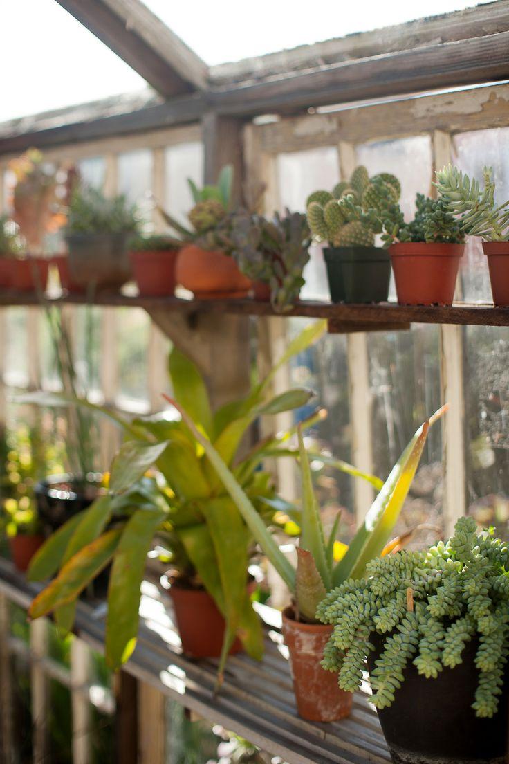 best garden inspiration images on pinterest landscaping