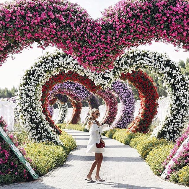 """❤️ Dubai Miracle Garden von ohh couture   – """"If I Could Do It All Over Again…But This Time MY Way"""""""