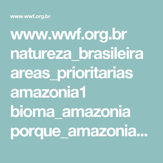 www.wwf.org.br natureza_brasileira areas_prioritarias amazonia1 bioma_amazonia porque_amazonia_e_importante