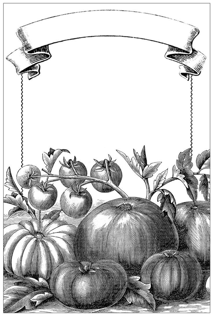 Garden Mason Jar Labels  //  The Graphics Fairy.  Free printable garden labels.