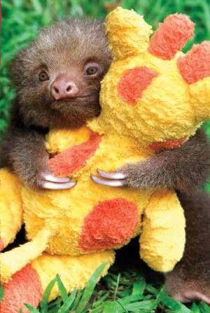 Enquanto abraçava ursinho...
