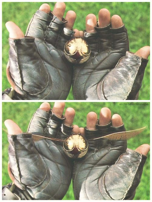 harry potter/thegoldensnitch