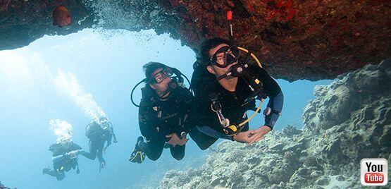 PADI: Professional Association of Dive Instructors