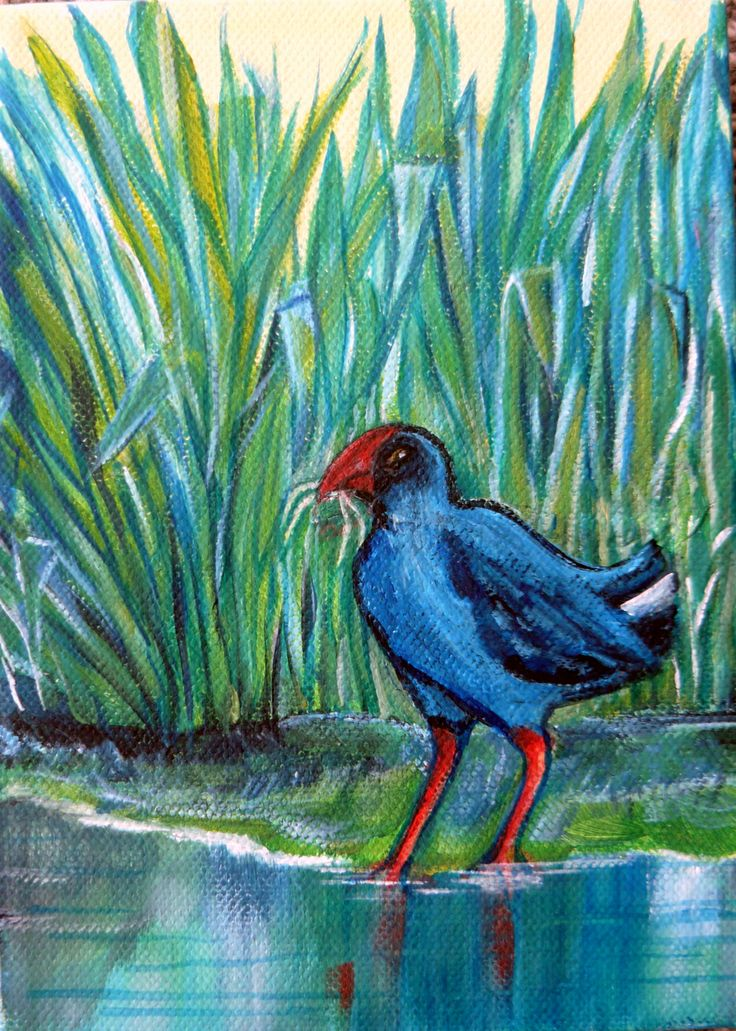 Sue Alderman-Pukeko Place