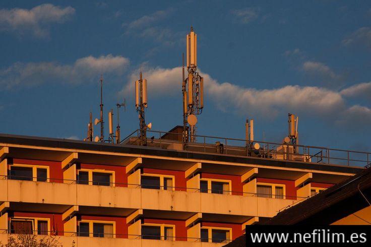 Los peligrosos efectos de vivir cerca de una antena de telefonía móvil (Estudios que no quieren que leas)