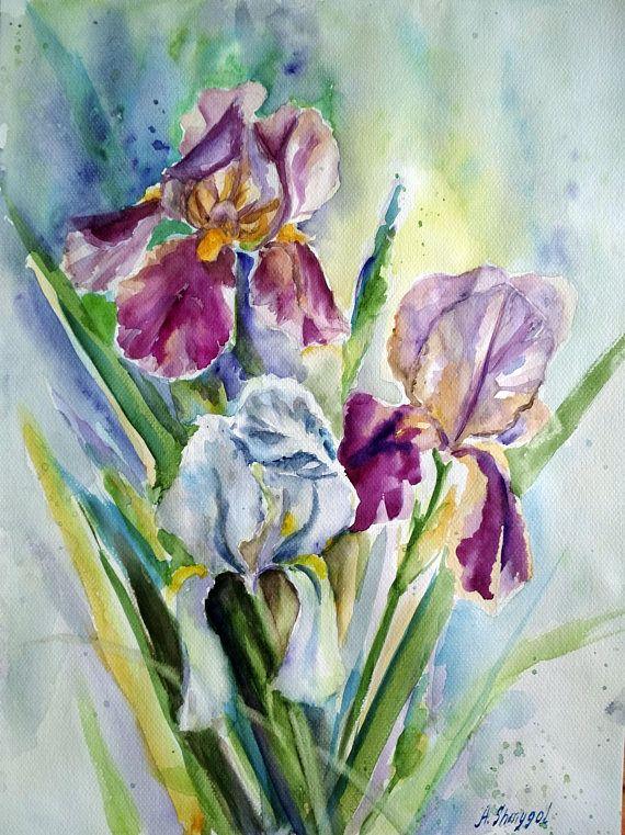 Original watercolor painting watercolor flowers  Iris