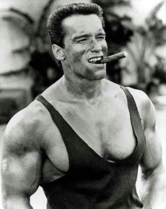 Pin by Ben Richards on Childhood shit | Arnold ...