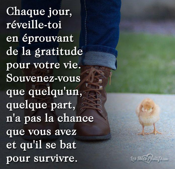 Chaque Jour Réveille Toi En éprouvant De La Gratitude
