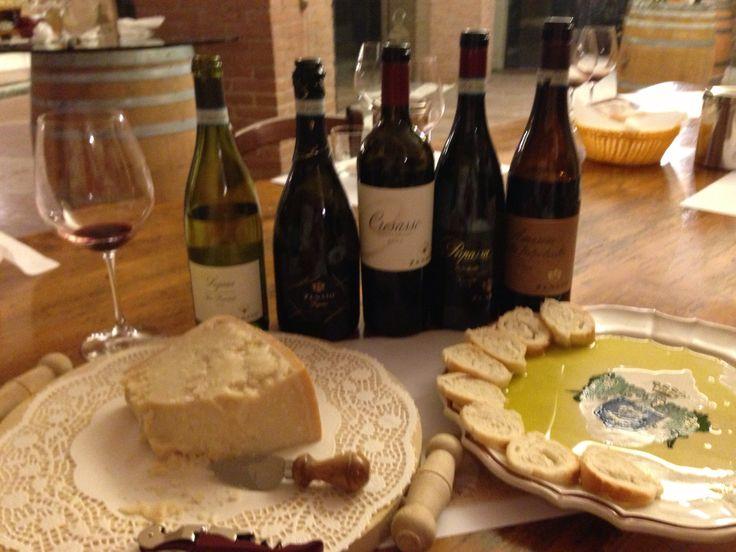 Wine tasting at Zenato Winery near Lake Garda