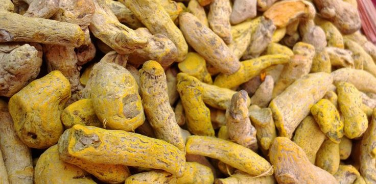 Learn how to grow your own turmeric at home