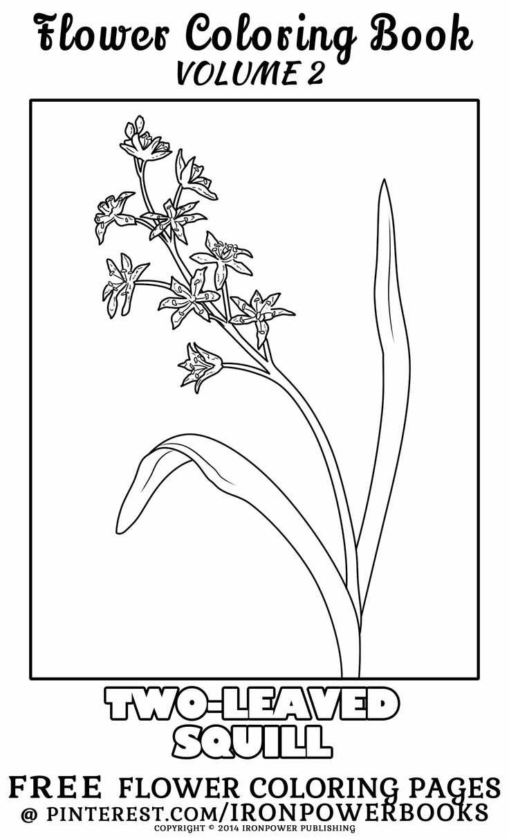 Free coloring pages of flowers - Free Printable Flower Coloring Pages For Kids And Adults Hi Zarilynx Please Follow