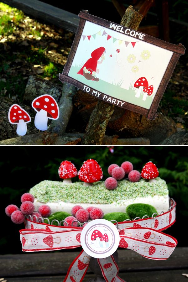 """""""Red Riding Hood"""" Inspired Birthday Party"""