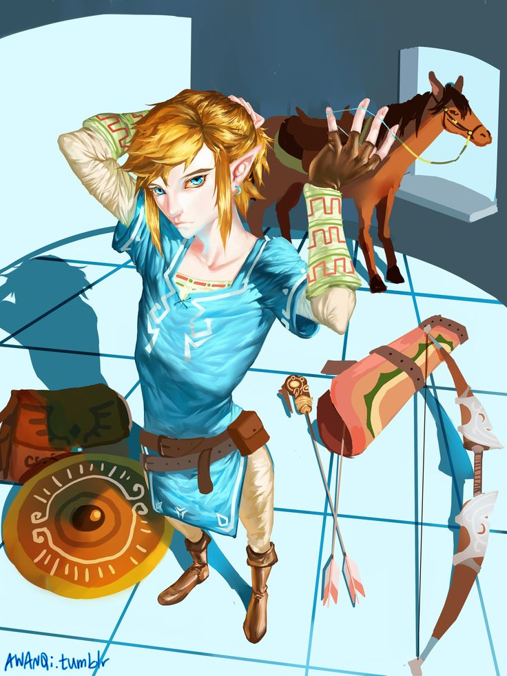 The Legend of Zelda #WiiU 2016 / Link and Epona