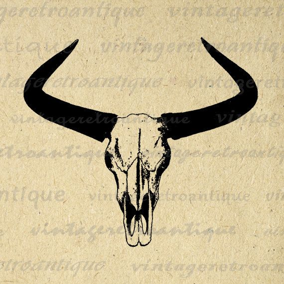 Western Horns Graphic Digital Printable Cow Skull Download Bull Image Antique Clip Art Jpg Png Eps 18x18 HQ 300dpi No.556 @ vintageretroantique.etsy.com #DigitalArt #Printable #Art #VintageRetroAntique #Digital #Clipart #Download