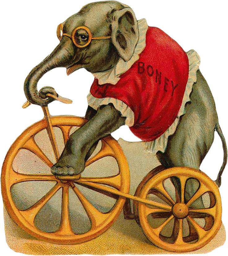 Винтажные картинки цирк, открытку белом