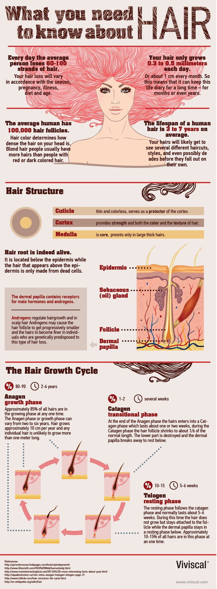 Some interesting facts about #hair. Image shows hair structure and how hair grow. #infographic from www.solidus.pro