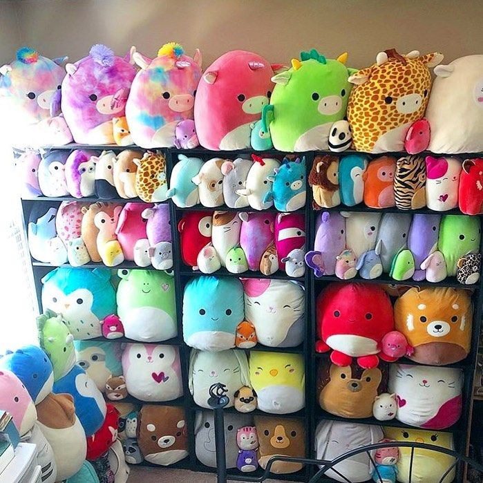 Squishmallows On Instagram Whoa What A Squad Squishmallows Squad We Re Kinda Obsessed How Do You Organize Your Cute Squishies Dog Room Decor Cute Toys