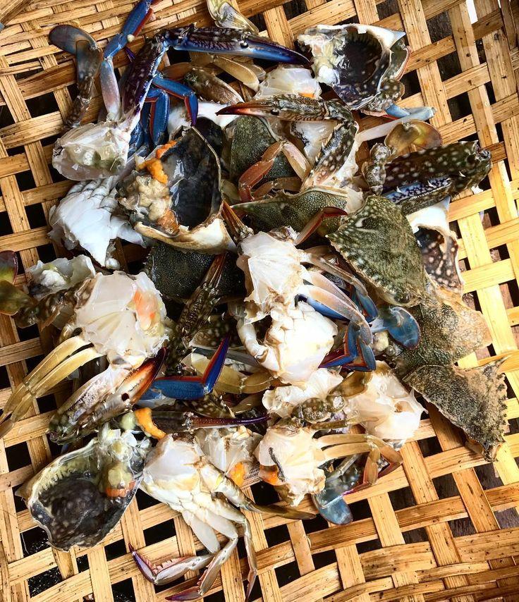 Kep blue crab Prepared for cooking with the help of @le_petit_singe  . . . #cambodia #instatravel #nevertoold #alwayslearning #gaytravel #wanderlust #nomad #adventure  #iamatraveler #travelinspiration #tropical #luxurytravel #interiordesign #inspiration #sailing #lessons #travelphotography #picoftheday #instagood #travelgram #travelblog #foodporn #crab #freshingredients #eatlocal