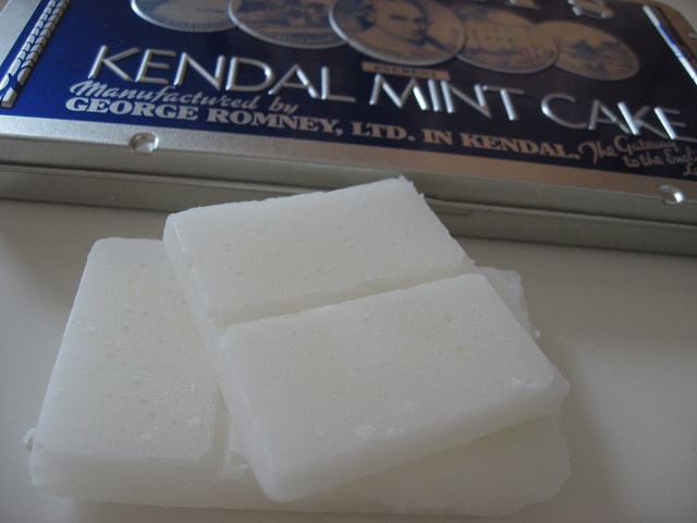 Kendle Mint cake... looks like cocaine... the sugar amount is so high... probably should be a drug.... sugar cooked in syrup..... yum