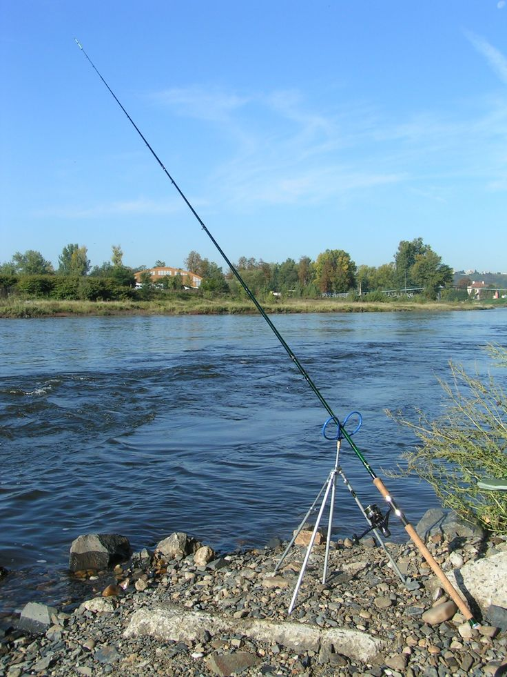 Best 25 best fishing rods ideas on pinterest fishing for Best surf fishing rods