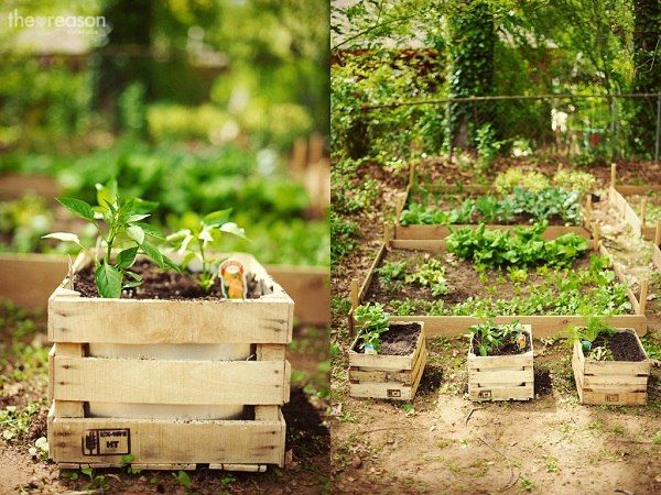 Caisse en bois pour jardin