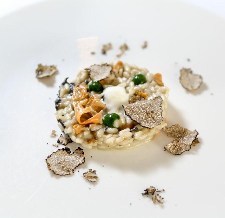 ricetta del Risotto al Tartufo estivo, crema di finferle gialli e neri con emulsione di Mascarpone e spinaci del ristorante Marcandole per Cocofungo 2013