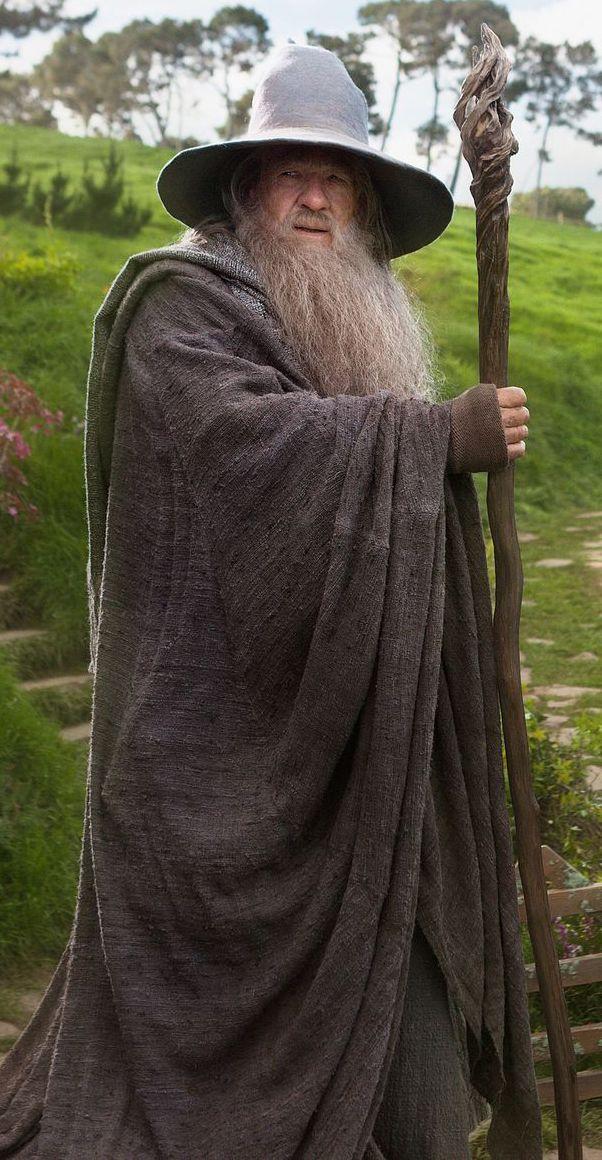 Image result for gandalf full body
