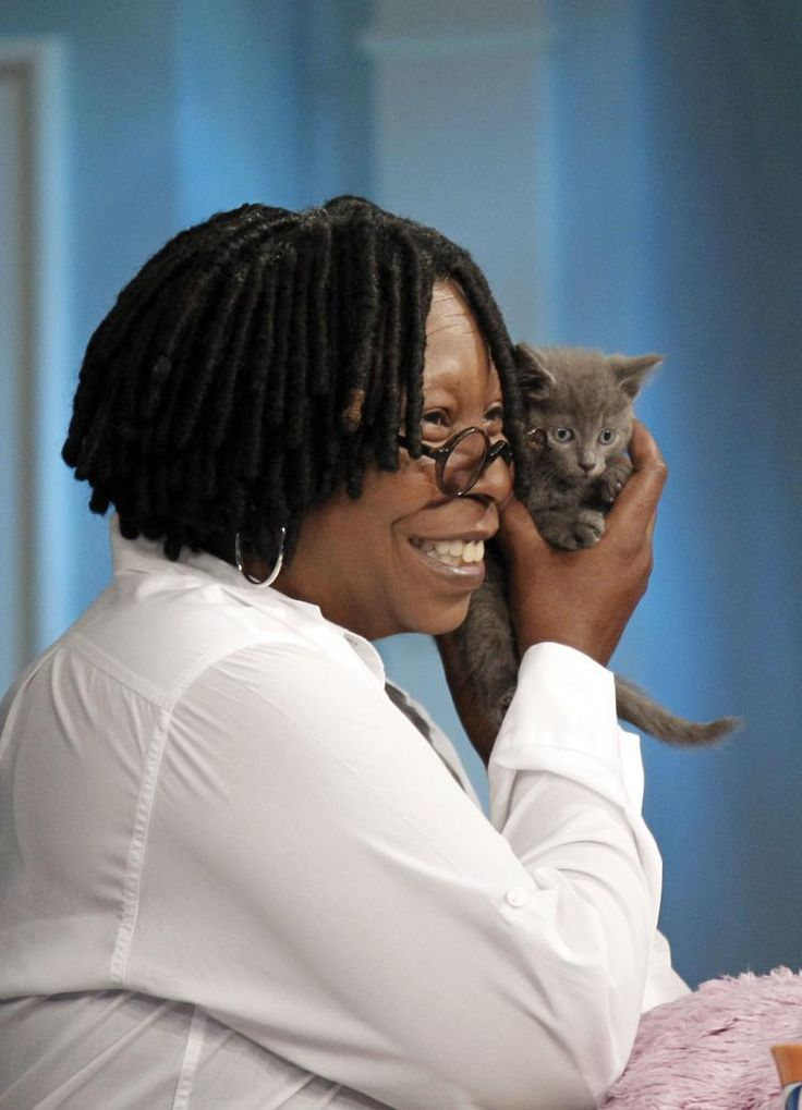 Whoopi Goldberg on July 7, 2011, Whoopi Goldberg cuddled with a five-month-old abandoned kitten named Verrazano.