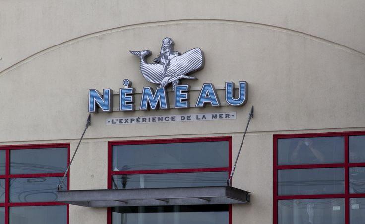 Ouverture#Nemeau#tonikstrategie