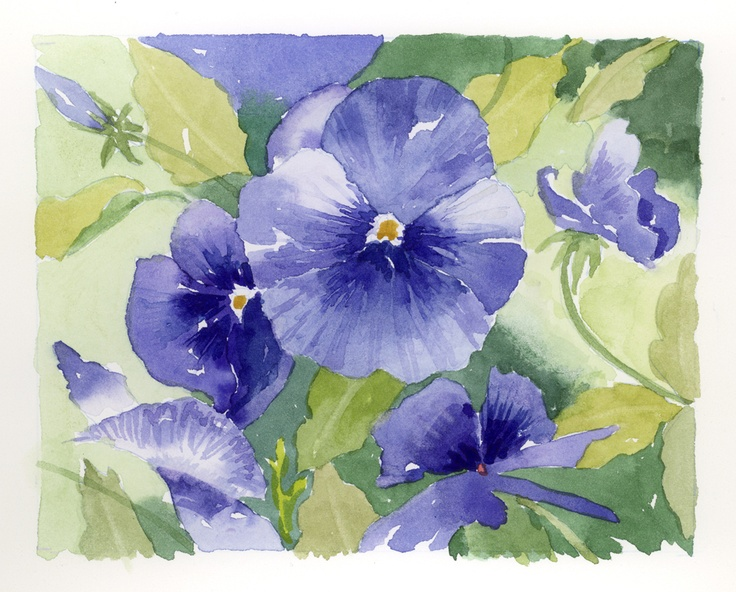 A watercolor study of blue pansies in the garden