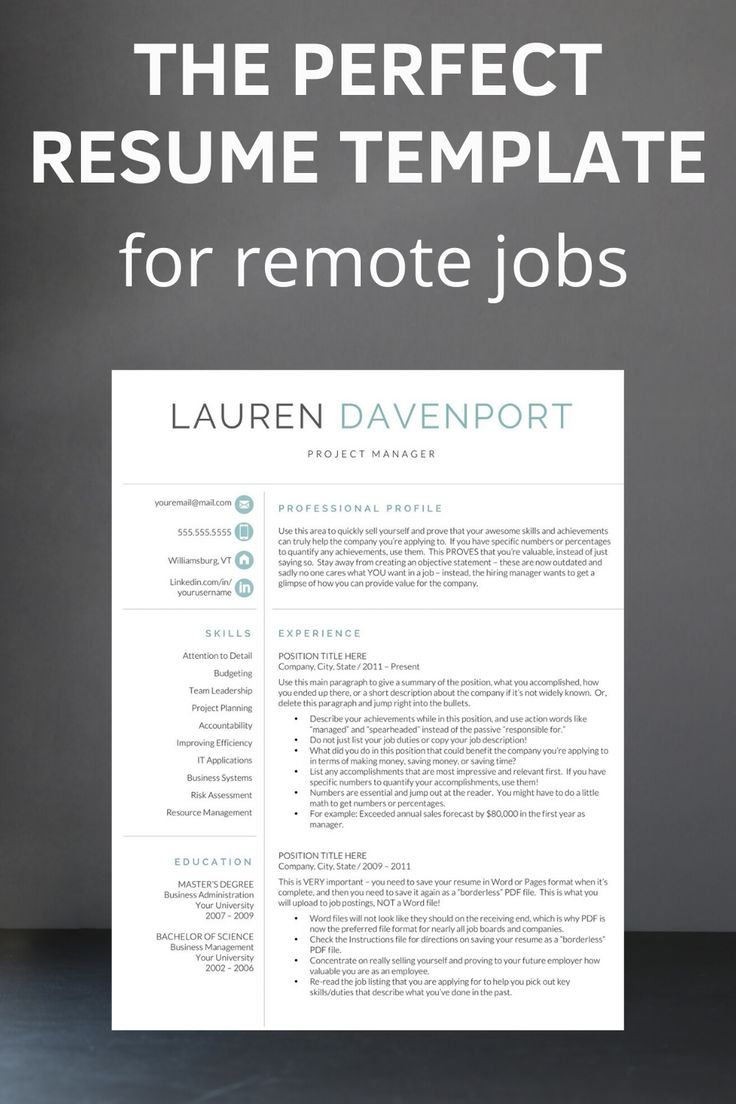17+ Perfect resume template 2020 Examples