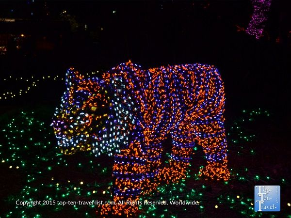 160 Best Christmas Holiday Light Shows Festivals More! Images  - Phoenix Zoo Christmas Lights