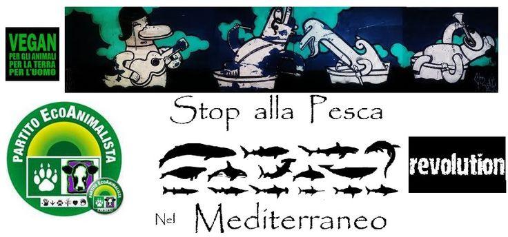 """Stop alla Pesca nel Mediterraneo """" Partito EcoAnimalista. https://www.facebook.com/stopallapescanelmediterraneo?ref=ts&fref=ts"""