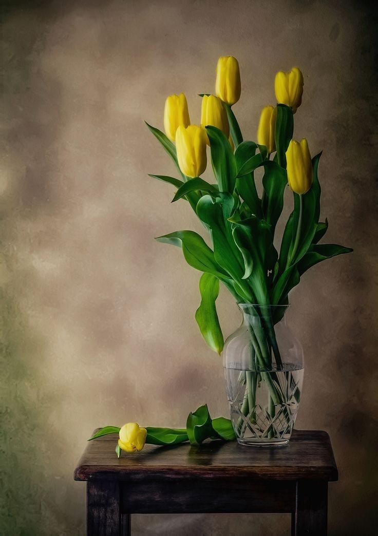почищенной выпотрошенной желтые тюльпаны в вазе фото своих