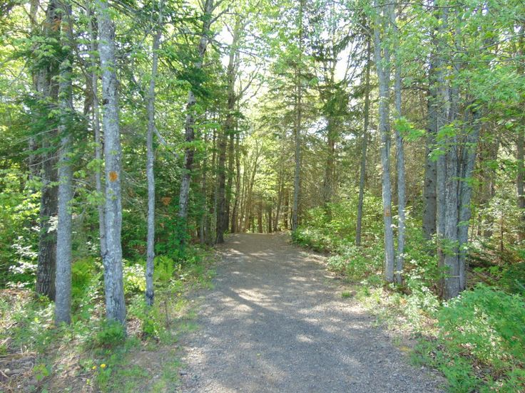 Your Healthy Year | Irishtown Nature Park in Moncton, NB | http://www.yourhealthyyear.com
