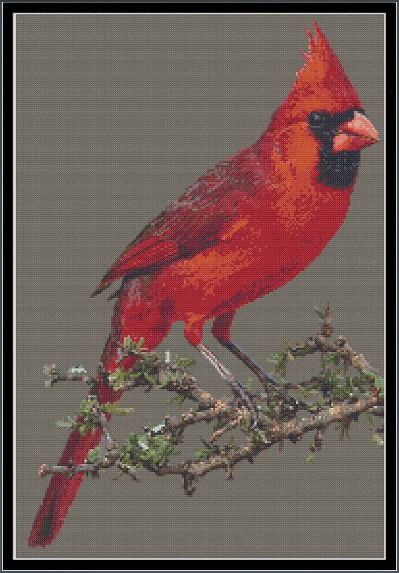 Cardinal Cross Stitch Pattern by apocalypsegirl on Etsy