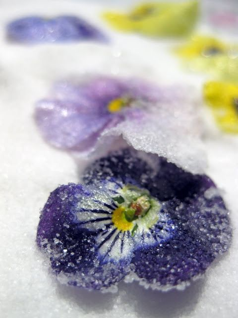 How to Make Candied Flowers (From Bakergal.com)