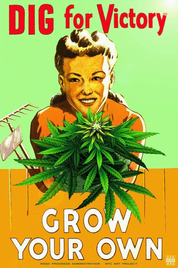 Grow your own marijuana weed memes