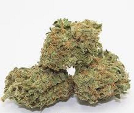 Go to..https://globalcannabisshop.net Text or call +14242347308   #buy weed online#buy maijuana online#buy weed wax online#buy weed shatter online#buy weed edibles#buy weed#buy weed online worldwide#buy marijuana online worldwide#buy marijuana wax online#buy marijuana online#buy legal weed online