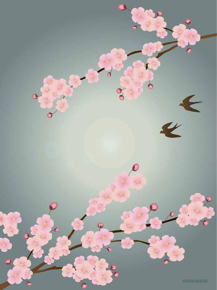 Sakura plakat med kirsebærblomster fra Vissevasse