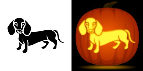 Dachshund pumpkin carving stencil. Free PDF pattern to download and print at http://pumpkinstencils.org/download/dachshund-pumpkin-stencil/