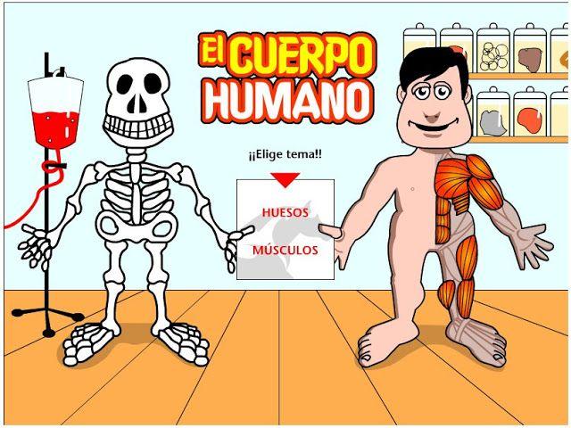 """""""El cuerpo humano"""", de Cajastur, consiste en identificar y localizar los huesos y músculos principales del cuerpo humano. Juego muy sencillo que podría practicarse a aprtir de 7 años o antes."""