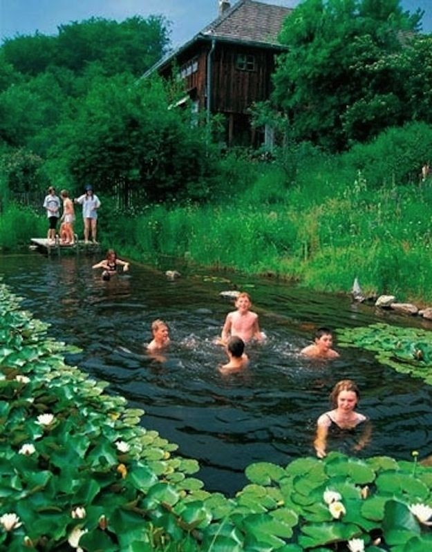 17 Natural Swimming Pools You Wish Were In Your Backyard Natural swimming pools use plants to filter the water instead of chemicals and look gorgeous while doing it.: