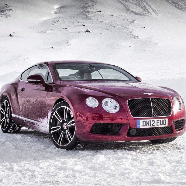 17 Best Ideas About Bentley Suv On Pinterest: 17 Best Ideas About Bentley Continental On Pinterest